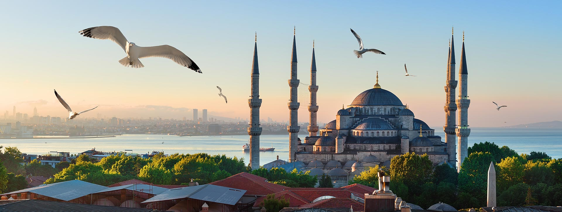 Apartments for Sale ın Istanbul